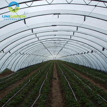 Durable Plastic Film High Tunnel Covering Greenhouse