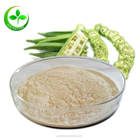 Factory wholesale organic dried okra powder