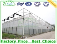 Double Layer Inflation And Film Cover Material Multi Span Prefabricated Greenhouse For Agricultural