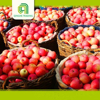 wholesale red fujli fresh fruit for sale from china