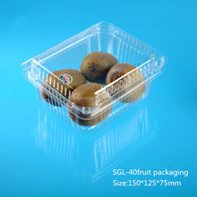 clamshell plastic box for food fruit 500g packaging