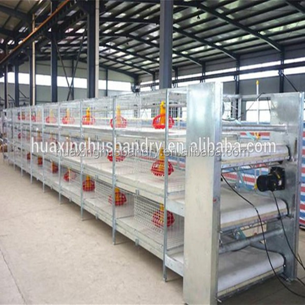 H type automatic chicken breeding cage chicken broiler cages for sale