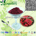 Natural aronia extract