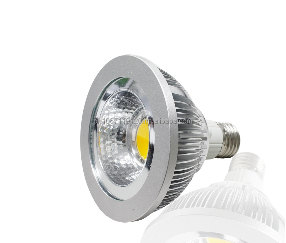 GES LED PAR30 Light 10 watts