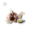 /product-detail/100-natural-garlic-extract-powder-25-allicin-0-3-1-5-allicin-powder-60240494138.html