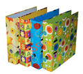 PVC/Paper file box with handles for school children