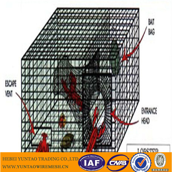 Commercial crab trap with large size for huge carb catching