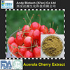 Pure Vitamin C 17% Natural Acerola Cherry Extract