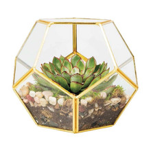 amazon best seller 2017 succulent plants glass decorative Air plant brass geometric glass terrarium wholesale