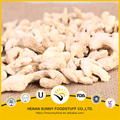 Dehydrated ginger whole ginger flakes and powder yellow color