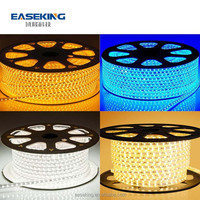 R/G/B/Y/W/RGB option 220 v wireless led strip light