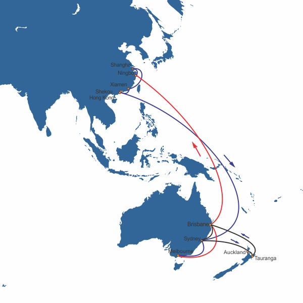 Sea freight from China to New Zealand