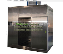 Thawing Machine/Defrosting Equipment