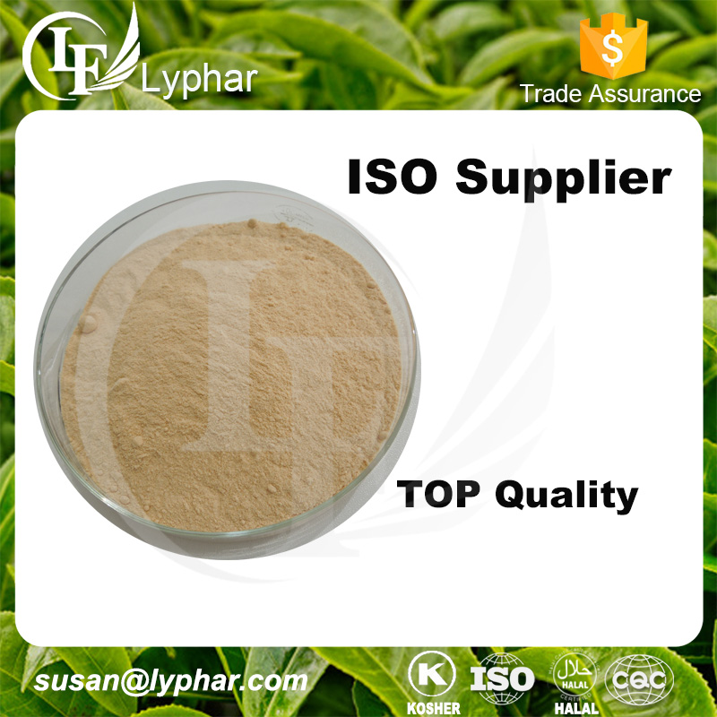 Wholesale 100% Natural Yeast Extract Powder