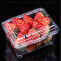 Disposable Strawberry Plastic Container