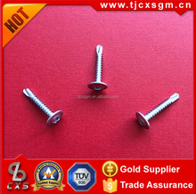 Button Wafer /Modify Truss Head Self drilling screw 4.2x25