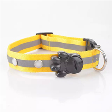 2018 Amazon best seller LED pet dog collar easy to clean Waterproof PP hunting dog collar