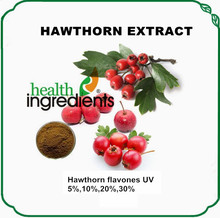 Herb for Cardiovascular Health Hawthorn Leaf Extract