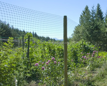 Cost effective deer fencing net