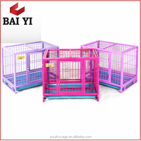 New Design Galvanized Steel Square Tubing Dog Cage And Large Dog Run Kennel