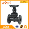 WZLD Manual Operated API 598 GB/T13927 JB/T9092 Stainless Steel Risting Stem Gate Valve