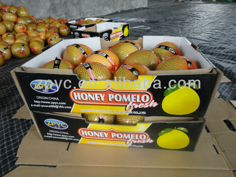 New delicious yellow Pomelo
