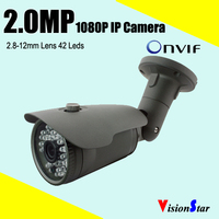 Full HD Outdoor/Indoor 1080P IP Camera H.264 NVR Camera Support Various Mobiles, Internet P2P Camera