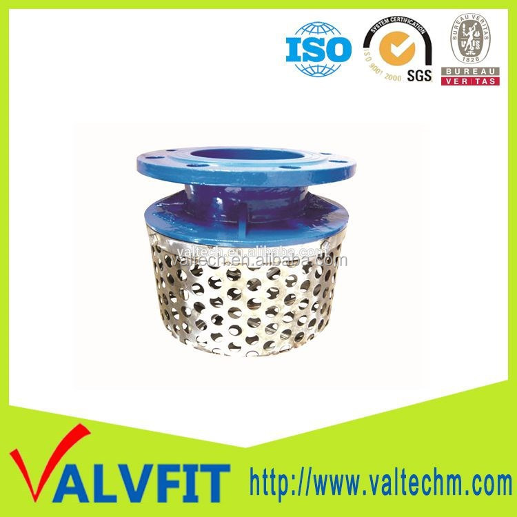 Big size DI pump rose strainer with ss basket strainer
