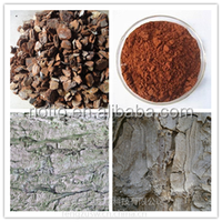 pine bark extract High quality & competitive price Proanthocyanidins 95%