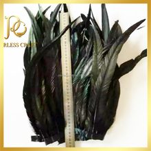 Black Iridescent Rooster Coque Tail Feathers