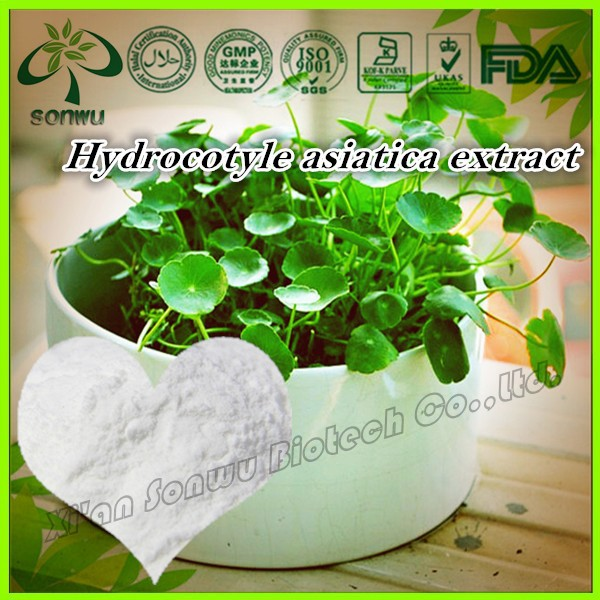 Natural Hydrocotyle asiatica extract/Centella asiatica extract/Asiaticoside powder