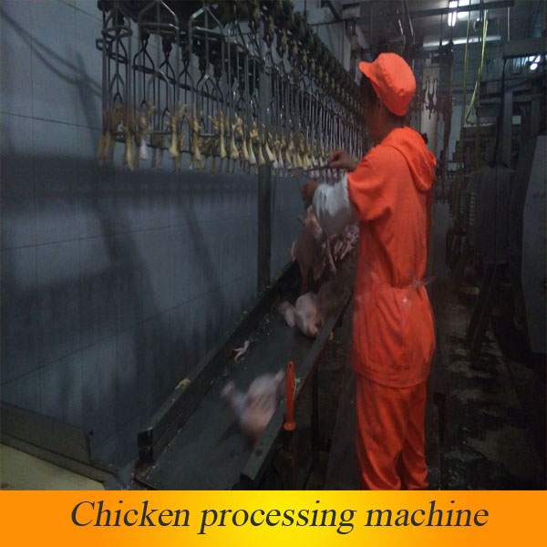 halal slaughter house /poultry slaughting machinery