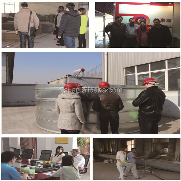 Customized Steel Grain Storage Silo for Sale, 100-10000 ton Corn Wheat Paddy Rice Silo Prices Cost Down