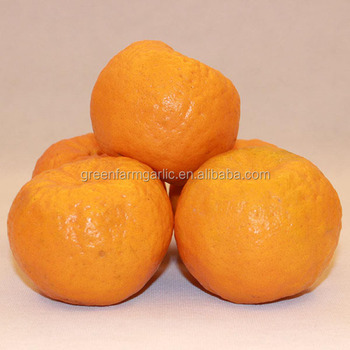 china seasonal fruit orange fruit