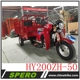 Hot Sale Heavy duty 200cc motor adult cargo tricycle trike for sale