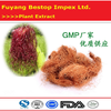 Yu Mi Xu Factory Supply 100% Natural Corn Stigma Extract Powder