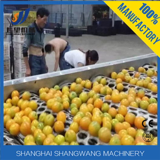 Full Automatic Fruit Orange Concentrated Juice Hot Filling Production Line /Equipment Plant with PET bottle