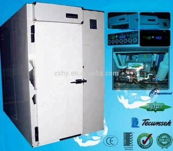 Blast Freezer Quick freezing machine Shock freezing machine