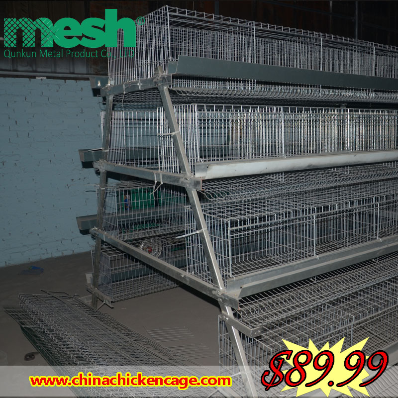 raising broiler chickens used chicken cages for sale chicken breeding cage for kenya farms