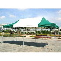 High Quality Custom Foldable Car Tent, Aluminum Carport,