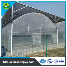 long life span multi span plastic film industrial greenhouse for sale