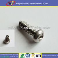 Stainless Steel Thread Forming Screws For Plastic