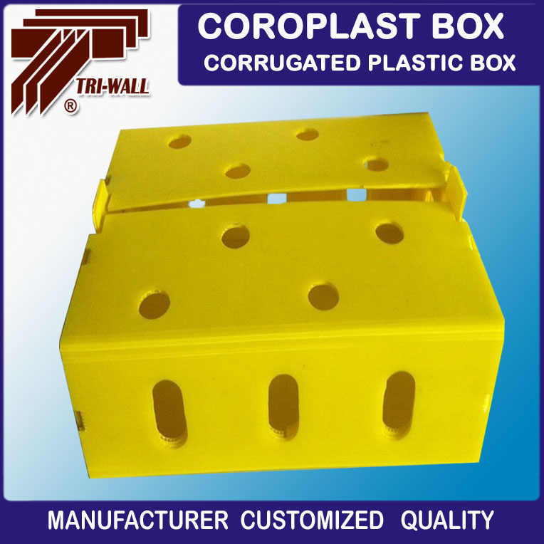 Coroplast Fruit Packaging Boxes Corflute Vegetable Trays Containers