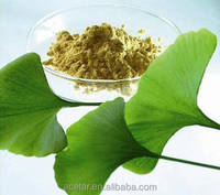Ginkgo Biloba Extract EP Total Flavones 24% Lactones 6% HPLC Gingko Acid <5PPM