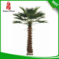 factory outlets palm tree fiber