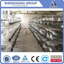 Hot Selling high quality pigeon Breeding Cage (factory price)