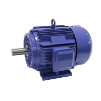 AC three phase induction electric car motor