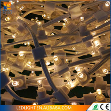 LED clip light garden and park Christmas holiday decoration