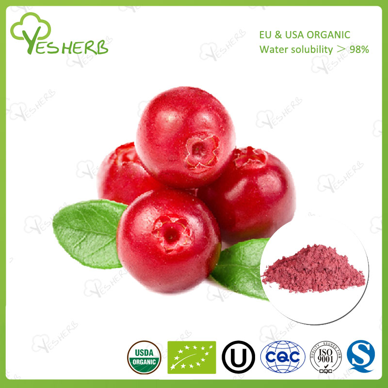 cranberry fruit dry extract 25% cranberry extract powder