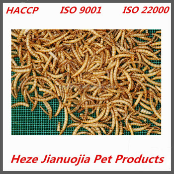 bulk yellow mealworms factory micro dried mealworms for pet birds